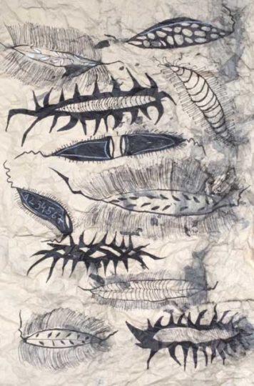 zeichnungen-18